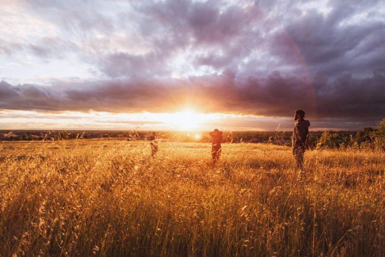 Sunset & Friends